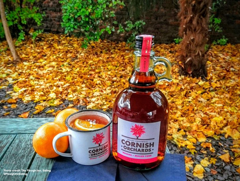 Beat the winter blues with our Wassail Mulled Cider