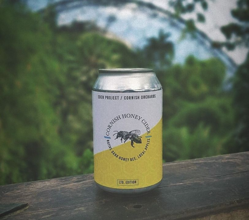 Terms & Conditions: Cornish Honey Cider Competition